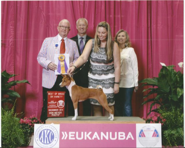 Aria Breed Eukanuba 2015.jpg
